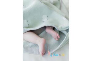 Вязаный детский плед ANIMAL SHEEPS фисташковый